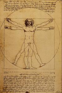 Studio_del_Corpo_Umano_-_Leonardo_da_Vinci